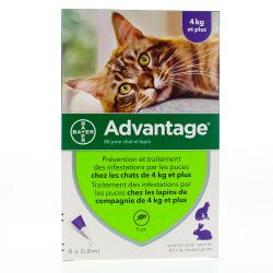 BAYER Advantage 80mg chat/lapin pipette 0.8ml x 6